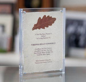 Lucite acrylic Frame Tree planting Certificate Lifestyle