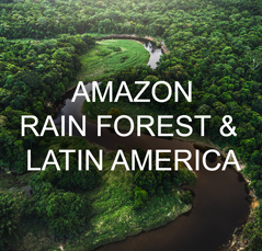 The Gifted Tree's Planting Location options in the Amazon Rain Forest and Latin America