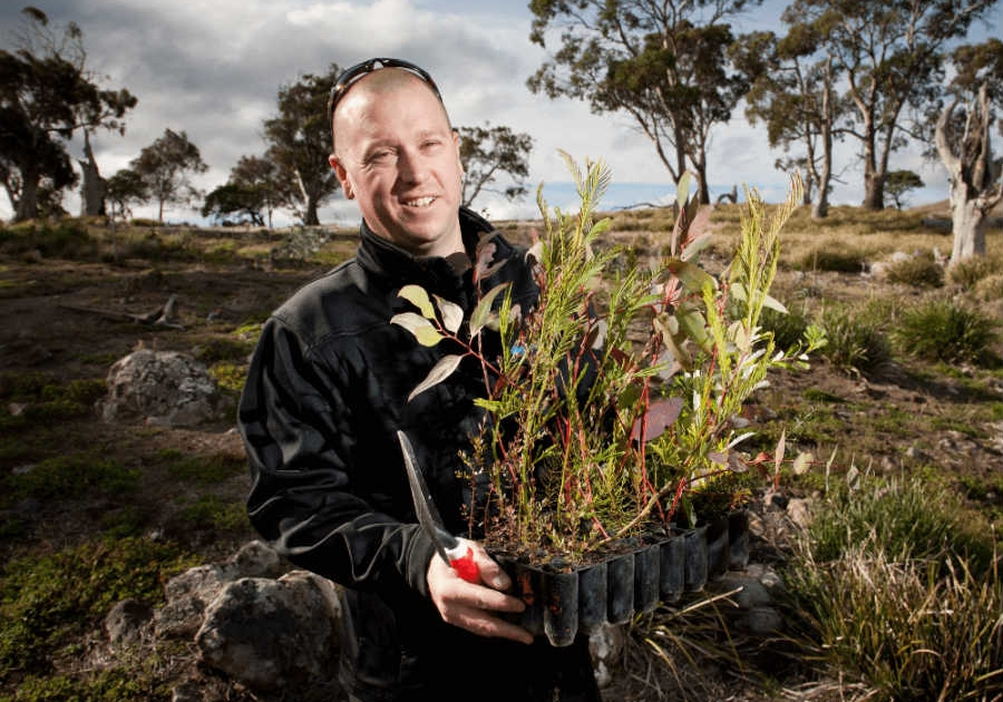 The Gifted Tree planting project in Tasmania, Australia