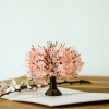 3D Pop-card Cherry Blossom tree lifestyle picture