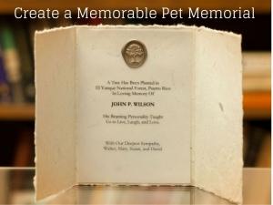 Create a Memorable Pet Memorial