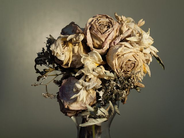 Dead Flower Arrangement