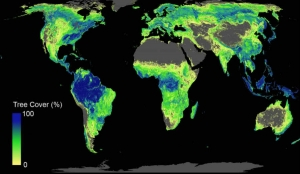 Global heat map indication the best places to plant trees