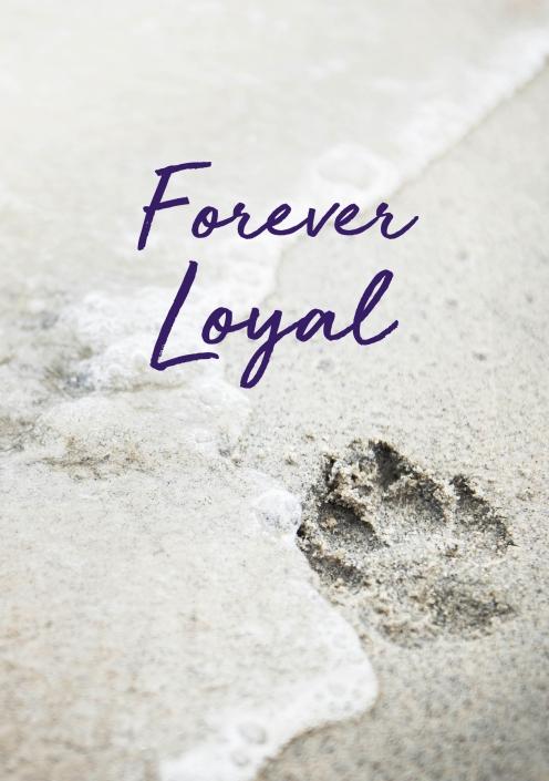 Click to View Pet Loss Digital eCard Options