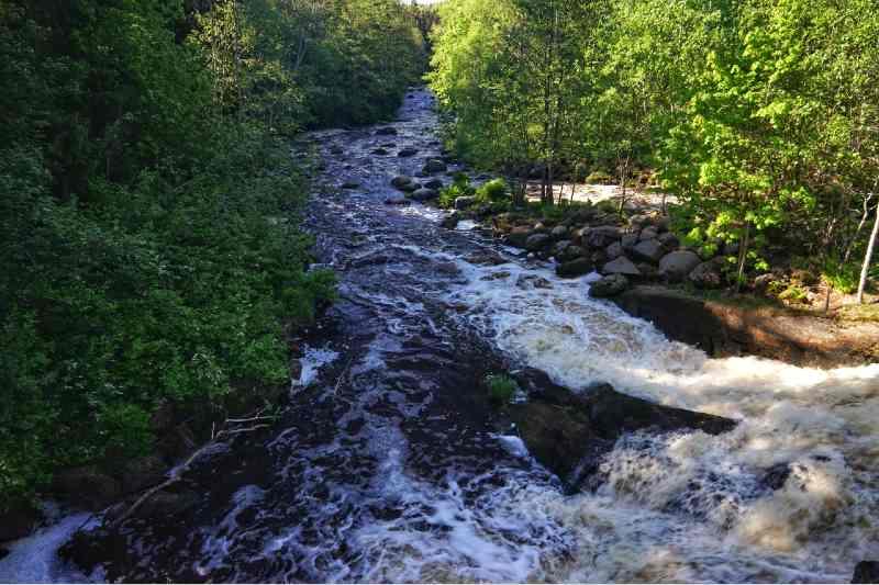 Mountain Stream Raging Through Beautiful Forest