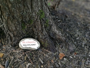 Beautifully painted rock with inspirational message laying next to tree trunk