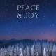 Holiday Digital eCard Front - Peace Joy