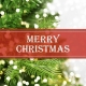 Holiday Digital eCard Front - Merry Christmas