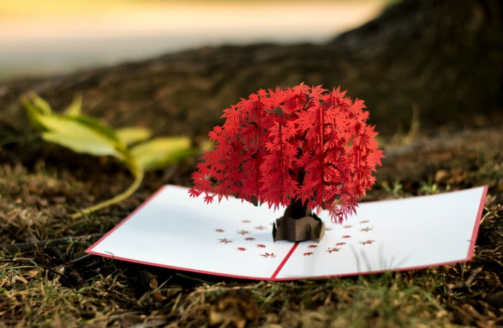 Japanese Maple 3D Pop-up Card Lifestyle Setting