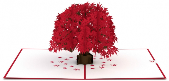 Japanese Maple Tree 3-D Pop-up Card Overview