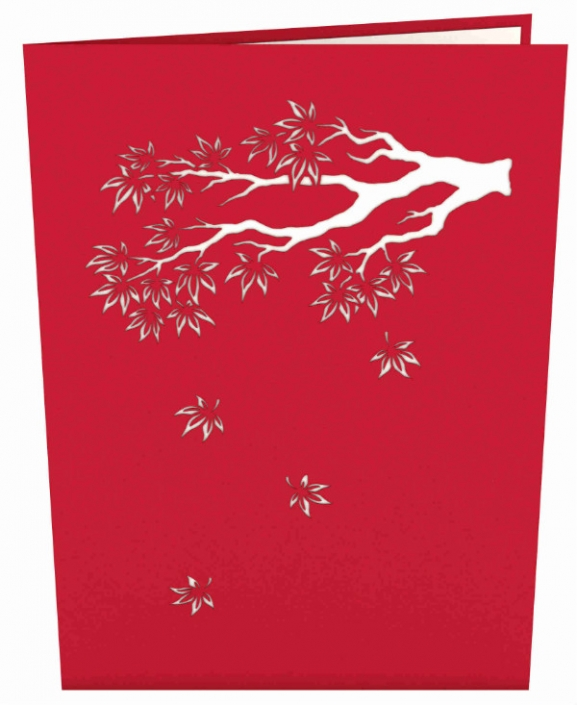 Japanese Maple Tree 3-D Pop-up Card Cover