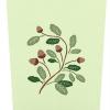 Live Oak Tree Popup Card Cover