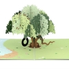 Live Oak Tree 3-D Popup Card Overview