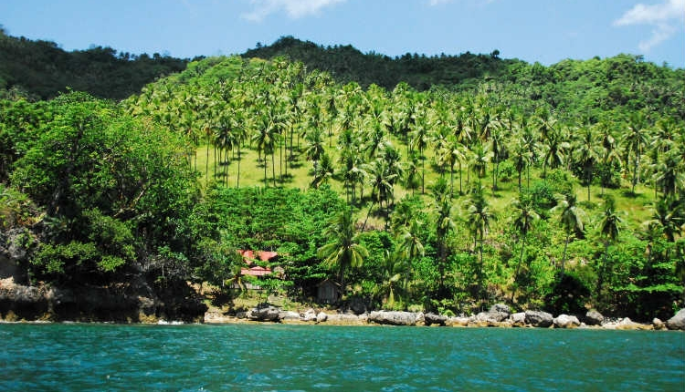 The Gifted Tree's Planting Location on the Island of Mindanao, Philippines