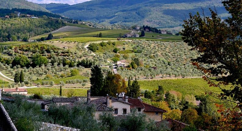Pomino, Tuscany, Italy planting site