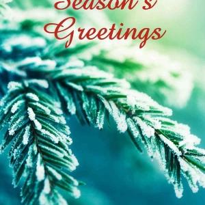 Holiday Digital eCard Front - Evergreen Season's Greetings