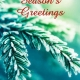 Holiday Digital eCard Front - Evergreen Season's Greetings