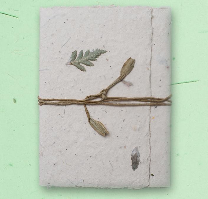 Handmade seed paper card closeup
