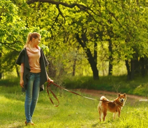 Women walking dog in the forest