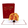 Sugar Maple Tree Popup Card Overview and Cover