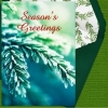 Holiday Digital eCard - Evergreen Season's Greetings