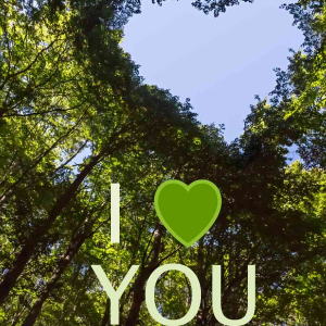 Valentines Digital eCard Front - Green Heart