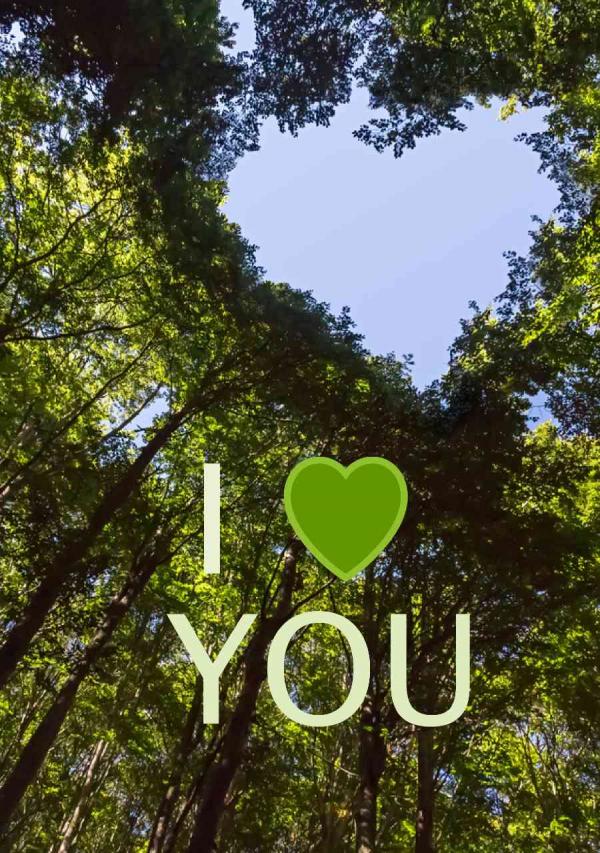 Valentines Digital eCard Front - Green Heart