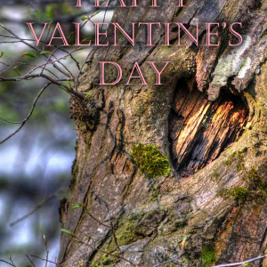 Valentines Digital eCard Front - Tree Heart