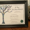 The Gifted Tree original artwork tree planting certificate in a wood frame