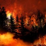 Massive California Wildfire spreading rapidly