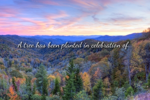 Gift tree eCard showing beautiful mountain scenery and the text: A tree has been planted in celebration of...