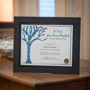 Framed Certificates