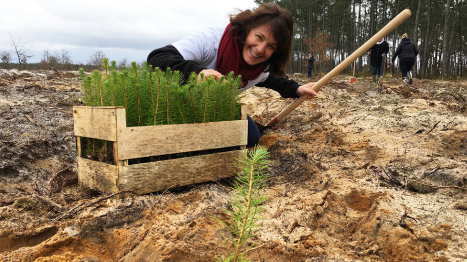 The Gifted Tree planting project in France