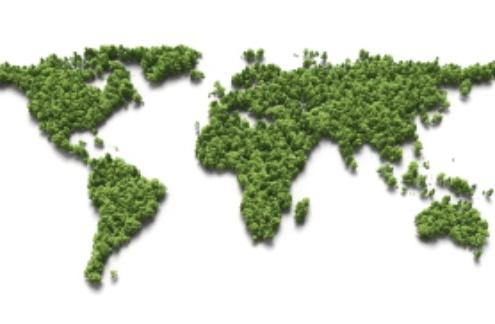 3D World Tree Map
