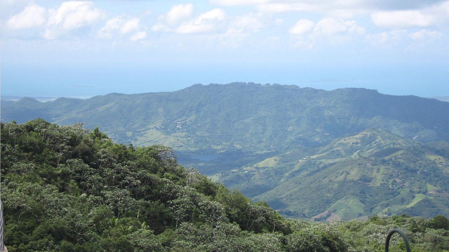 El Yunque National Forest birds-eye view, Puerto Rico