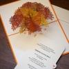 Oak Tree 3-D Pop-Up Card tree planting certificate sample
